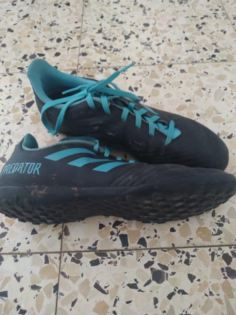 נעלי קטרגל